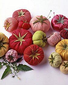 Игольница помидор